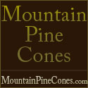 Mountain Pine Cones